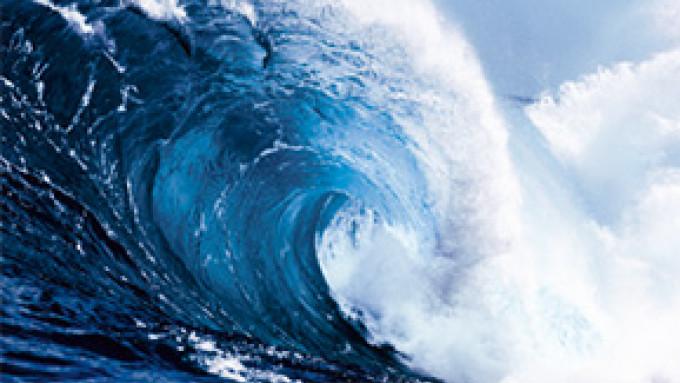 CWS Paradise Air Bar Duft Ocean Fresh