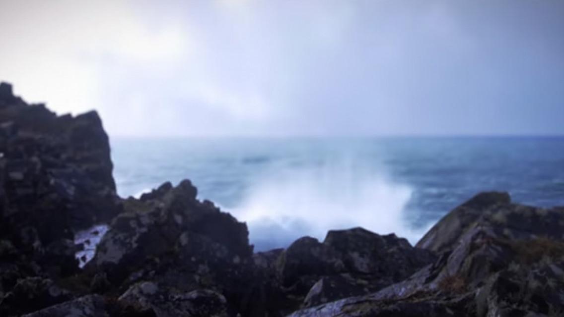 CWS Duft Ocean Fresh – Paradise Air Bar